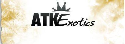 $19.95 ATK Exotics Coupon